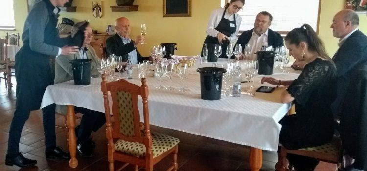 Víťazi z 1. kola súťaže Národný salón vín sú už známi